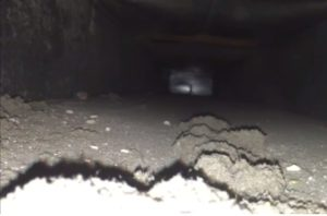 new jersey air duct cleaning